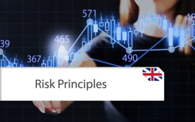 Fundamental Risk Principles