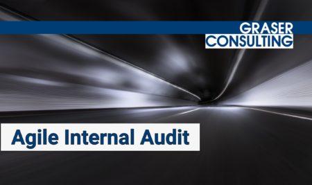 Building an Agile Internal Audit Function