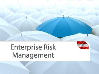 Intergriertes Enterprise Risk Management